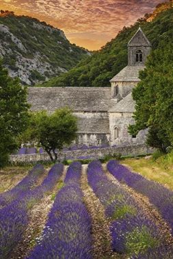 Provence, France - Lavender Fields
